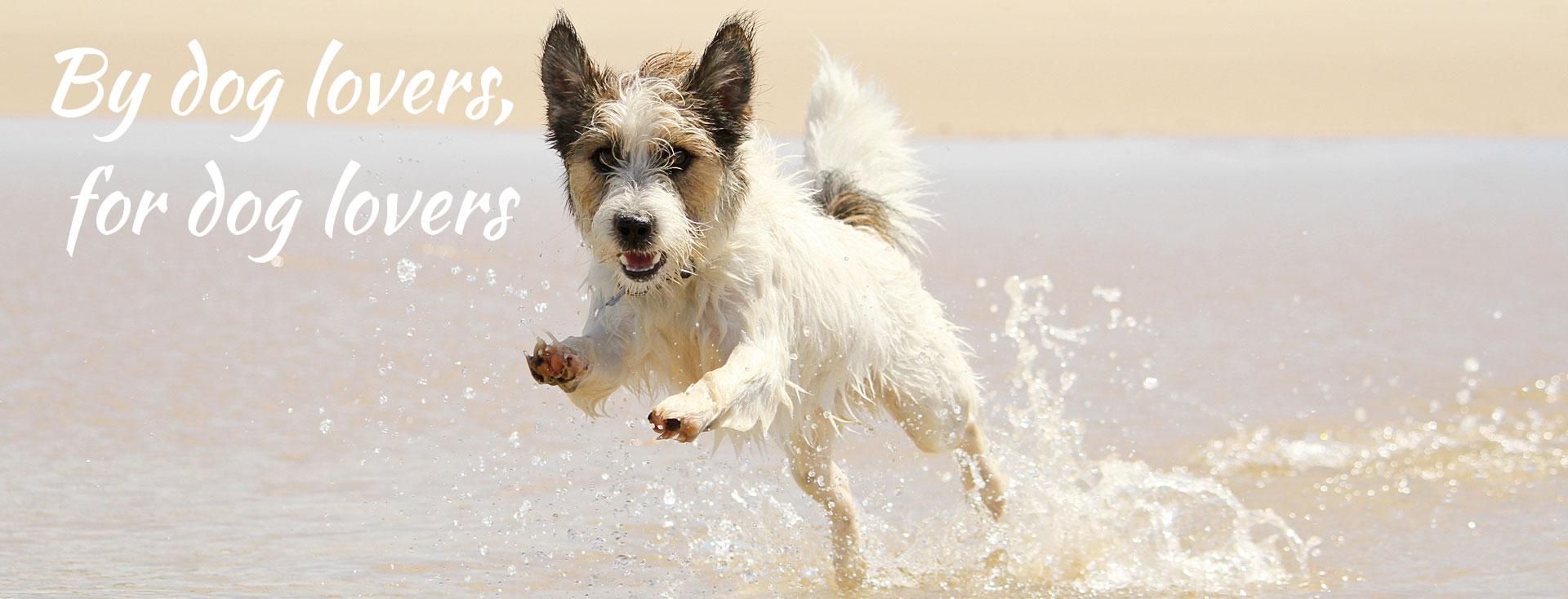 organic dog wash melbourne