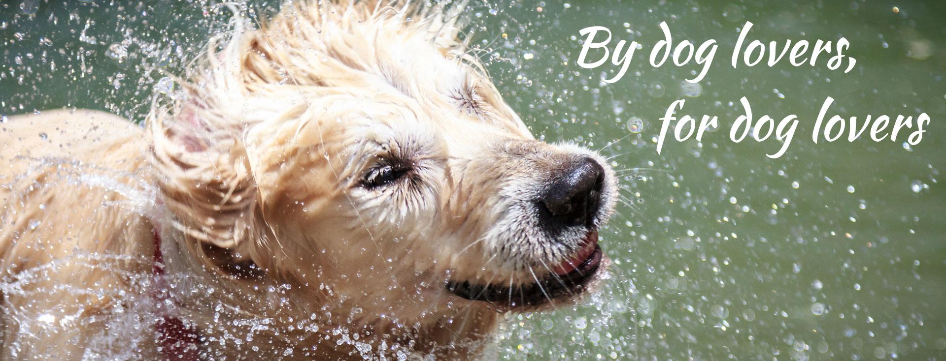 dooba dog wash melbourne