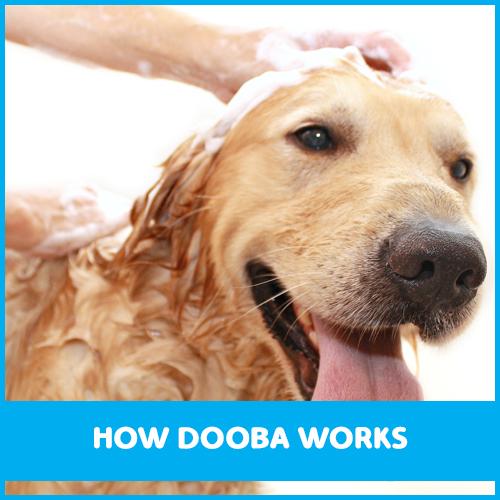 Organic DIY Dog Wash Brunswick