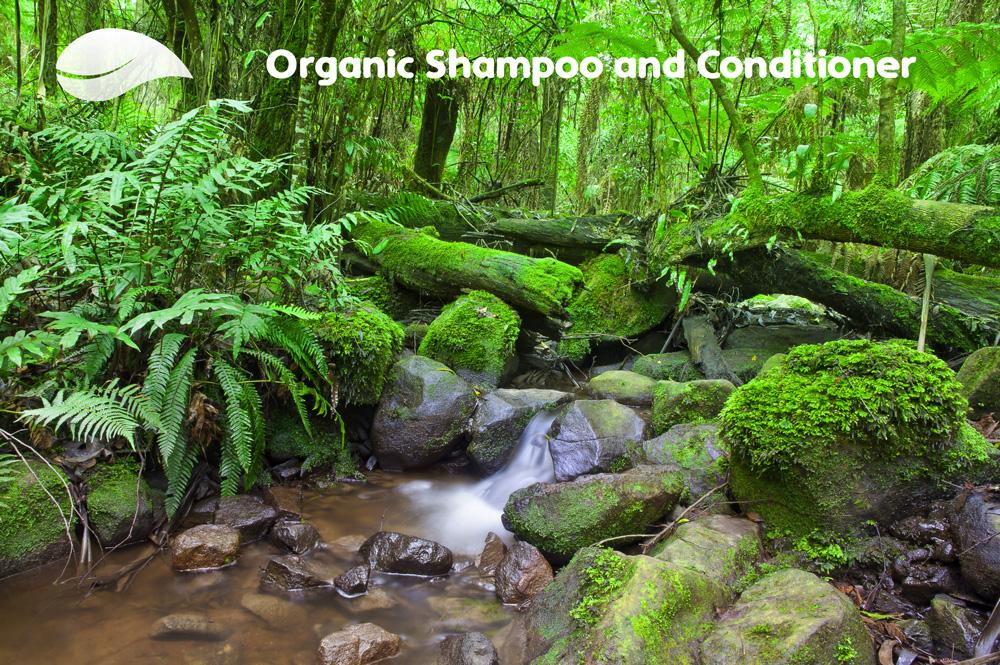 dog shampoo organic